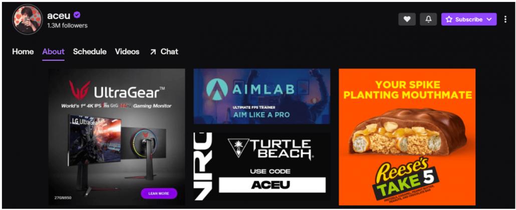 Popular Twitch Streamer Aceu